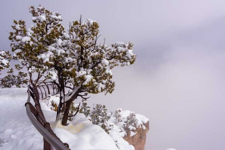 Grand Canyon National Park overlook in snow-min