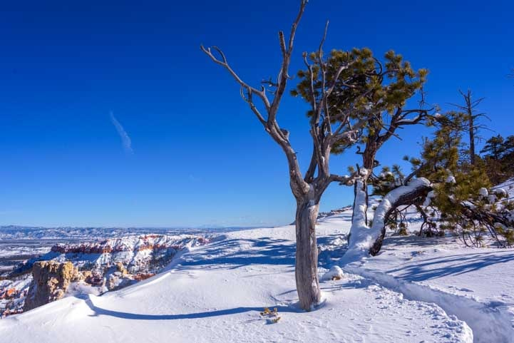 Deep Snow at Bryce Canyon National Park-min