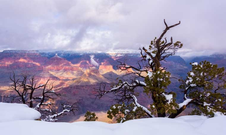 Grand Canyon National Park snow view-min