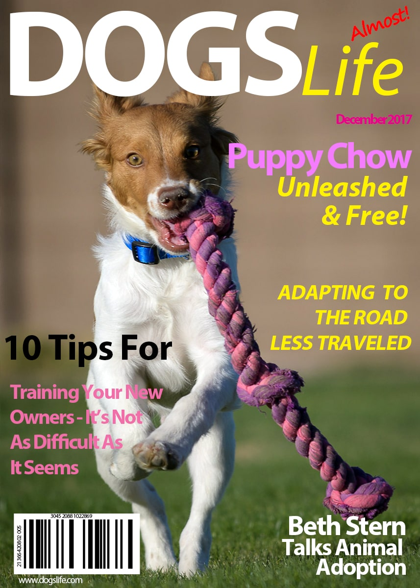 Dogs RV Life Magazine Dec 2017-min
