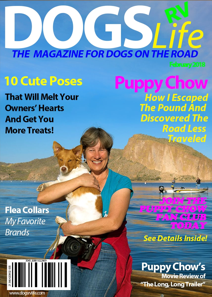Dog's RV Life Magazine Feb 2018-min