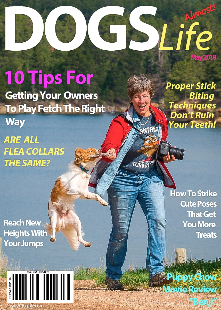 Dog's RV Life Magazine May 2018-min