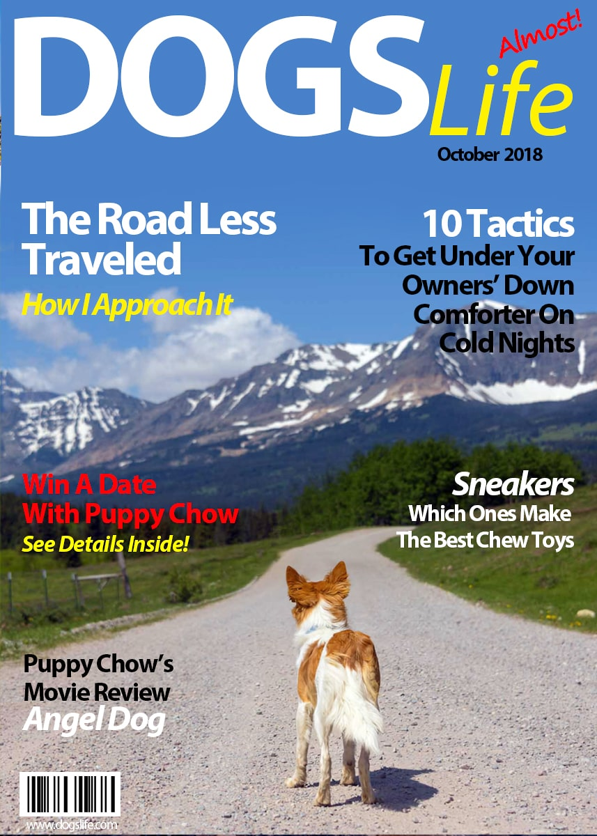 Dog's RV Life Magazine October 2018-min
