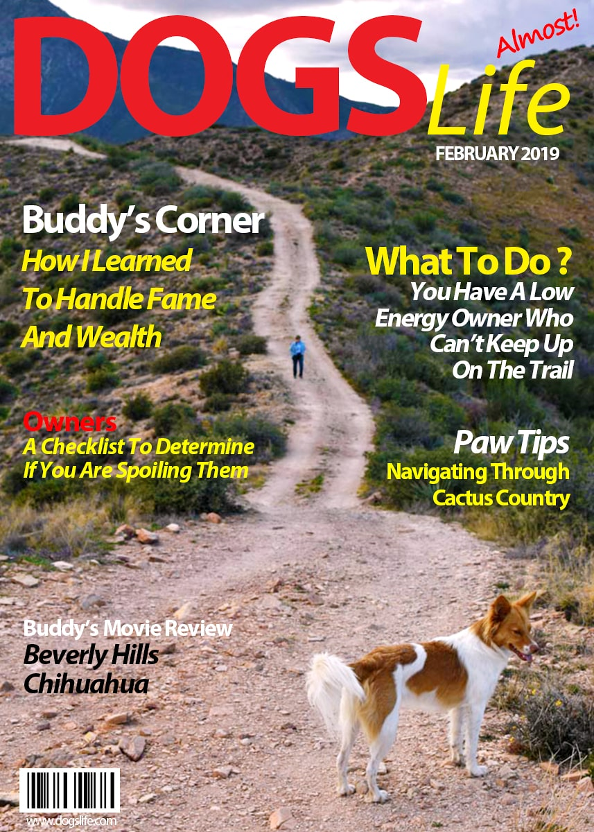 Dog's RV Life Magazine February 2019-min
