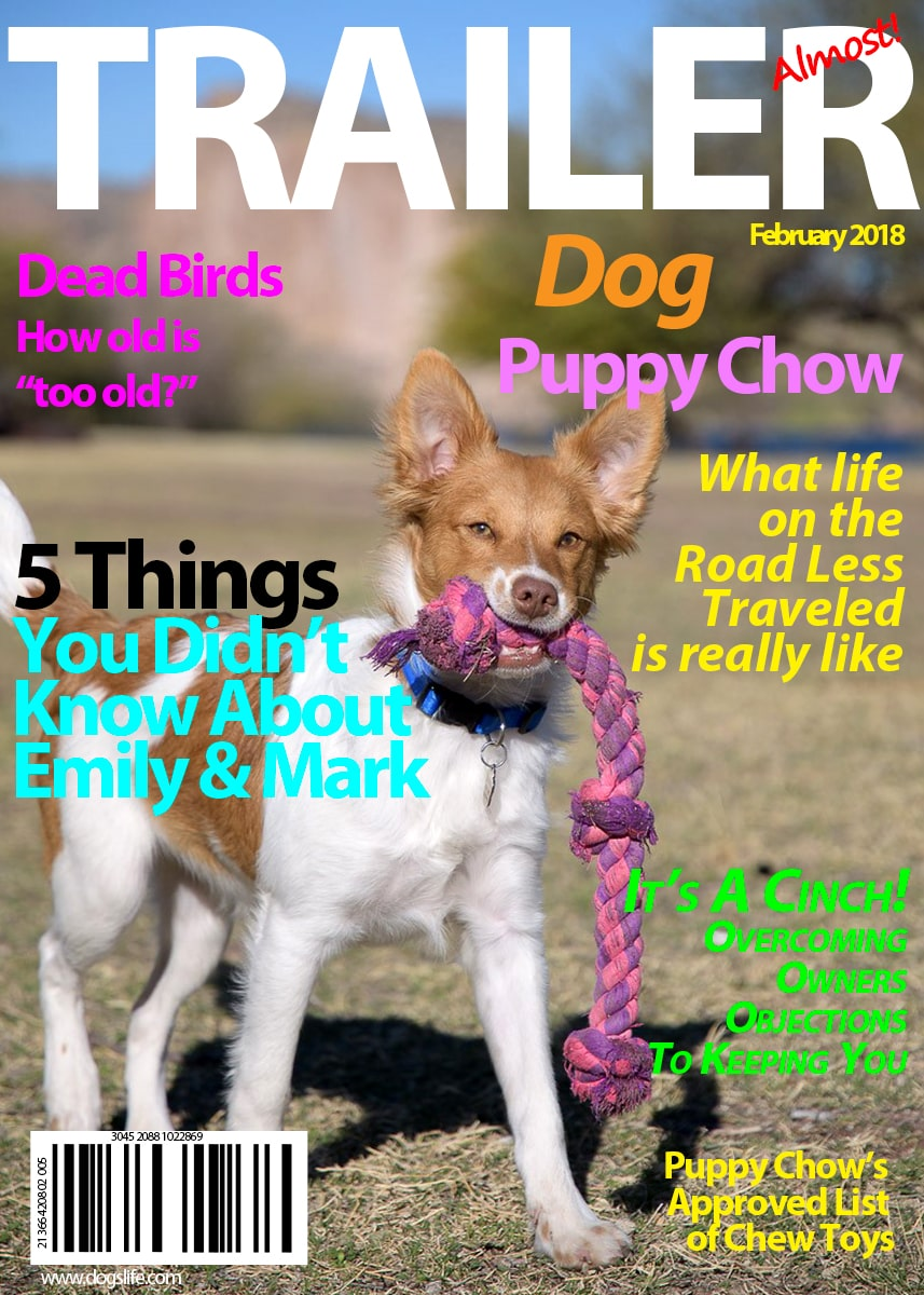 Trailer Dog Magazine February 2018 -min