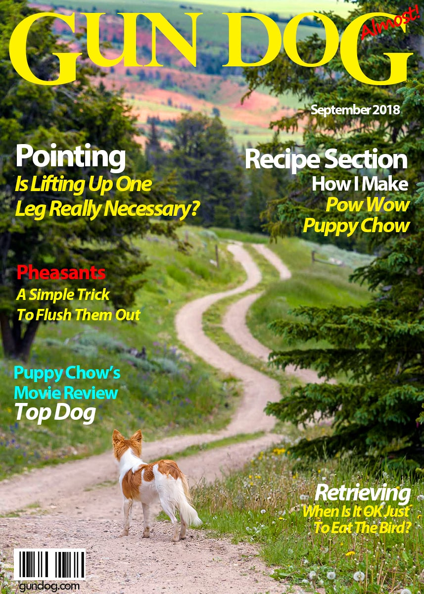 Gun Dog Magazine October 2018-min