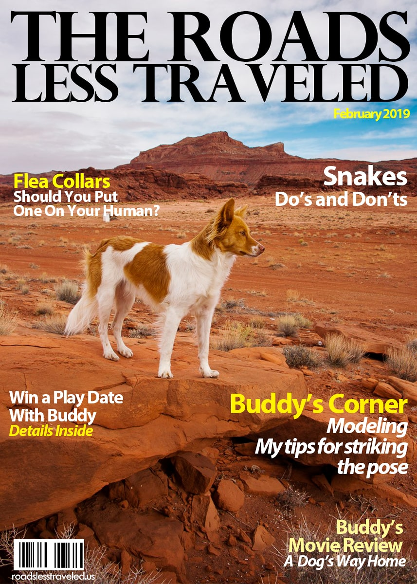 Roads Less Traveled February 2019-min
