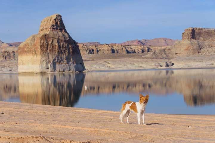Lone Rock Glen Canyon Arizona-min