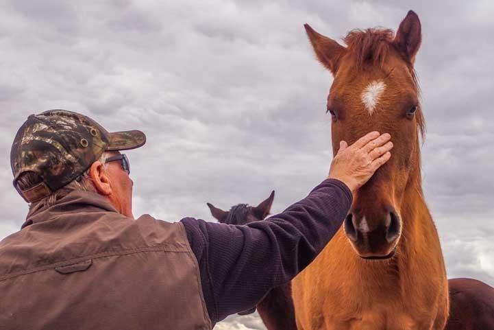 Petting a wild horse in Arizona-min