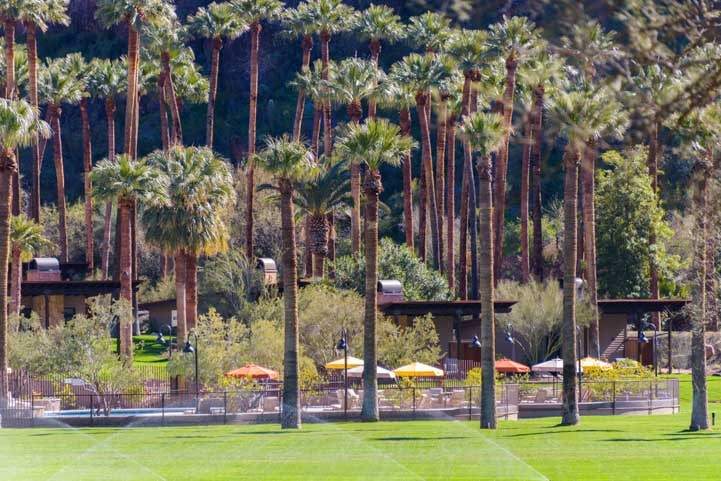 Palm trees and swimming pool Castle Hot Springs Resort Arizona-min