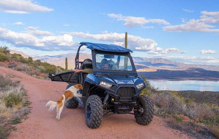Dog jumps in Polaris RZR 900 XC EPS Edition-min