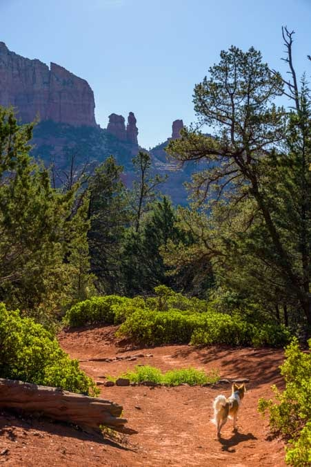 Brins Mesa Trail Sedona Arizona hike-min