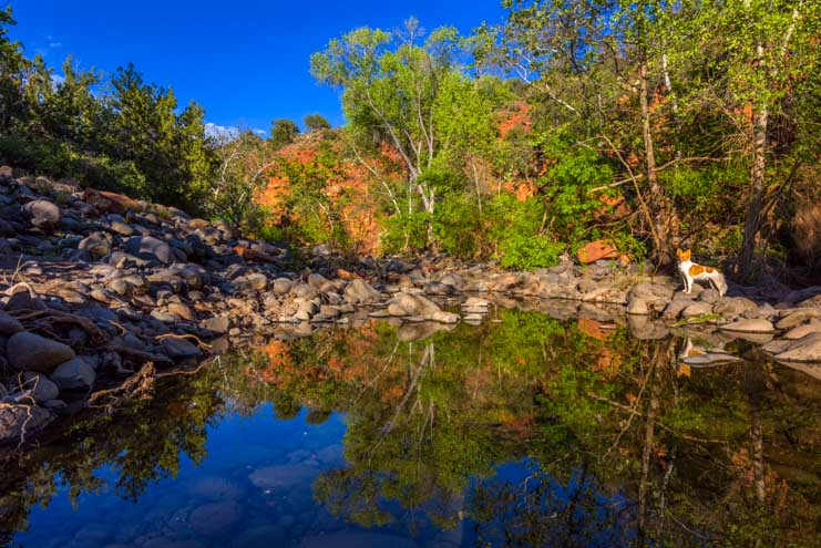Reflections in the water Sedona Arizona-min