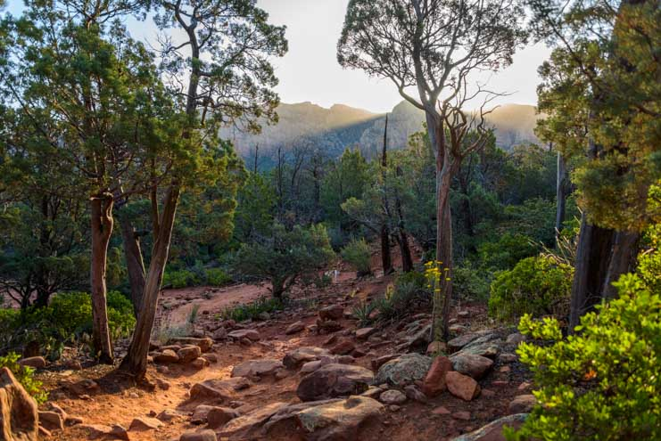 Early morning light hiking Broken Arrow Trail Sedona Arizona-min