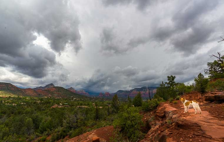 Sedona Arizona red rock view with stormy sky and puppy-min