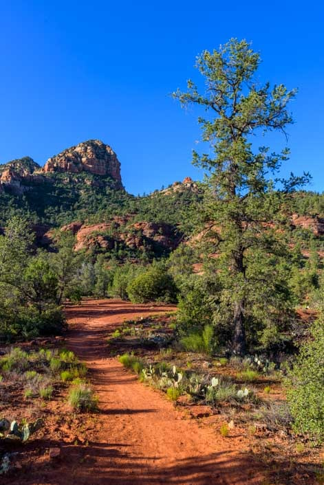 Templeton Trail Hike Sedona Arizona-min