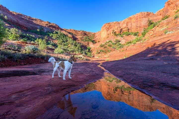 Red Rocks in Sedona Arizona on Hog Heaven hike-min