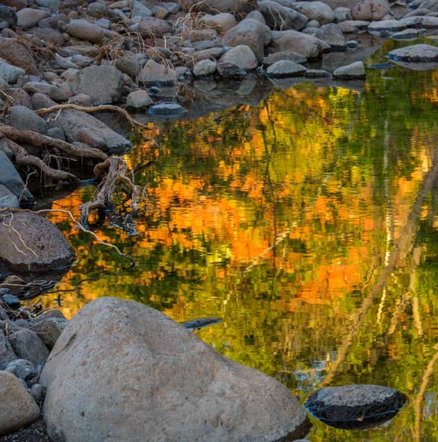 Reflections in the water Sedona Arizona-min