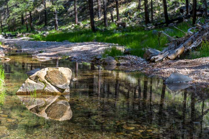 Reflections in a forest stream-min