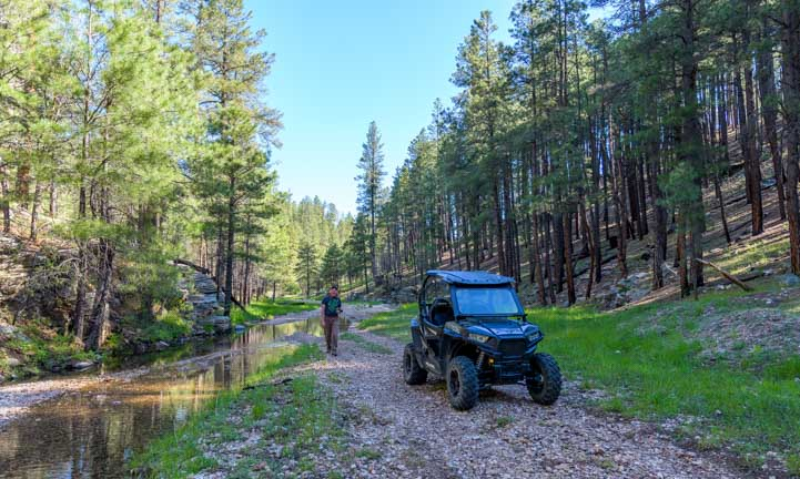 Polaris RZR adventure on a forest trail-min