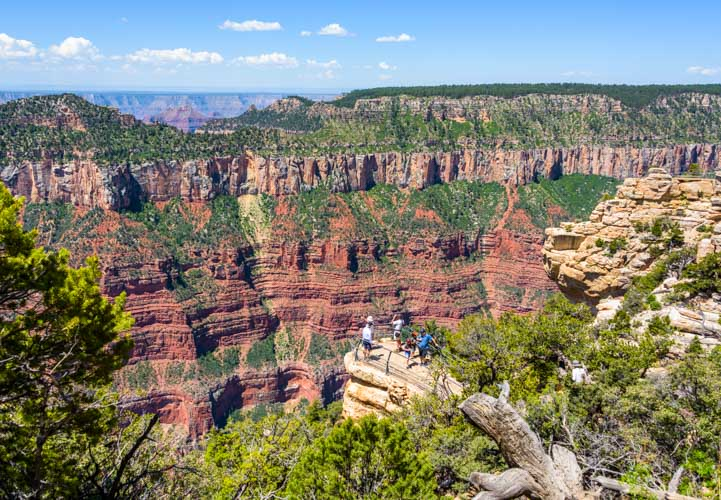 Grand Canyon North Rim overlook-min