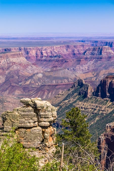 Grand Canyon from Saddle Mountain Overlook-min