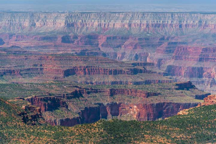 View of Grand Canyon at Timp Point-min