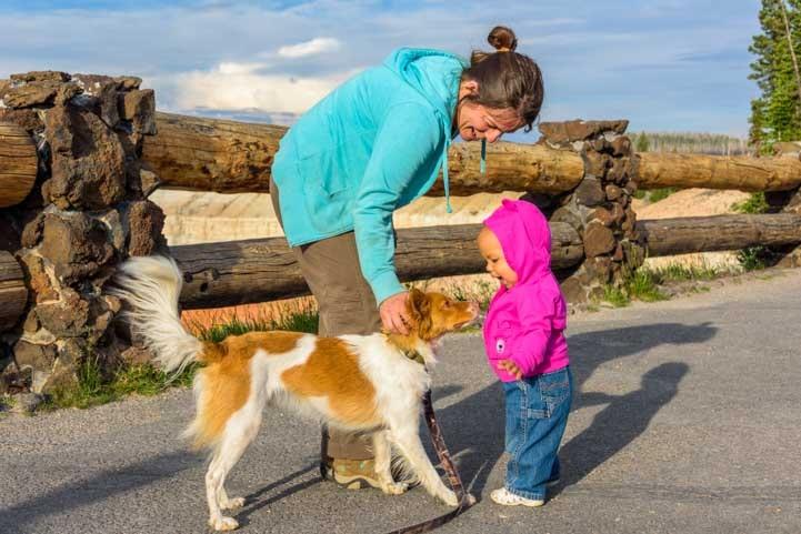 Puppy makes a new friend-min
