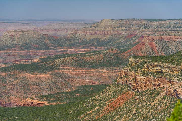 Orange and green landscapes at Grand Canyon-min