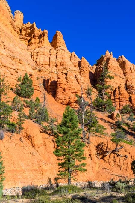 Red rock pinnacles in Casto Canyon Utah-min