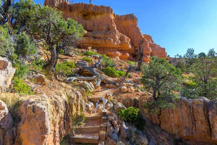 Stairs on Arches Trail Red Canyon Utah-min