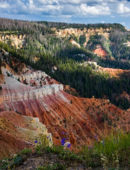 Cedar Breaks National Monument colors-min
