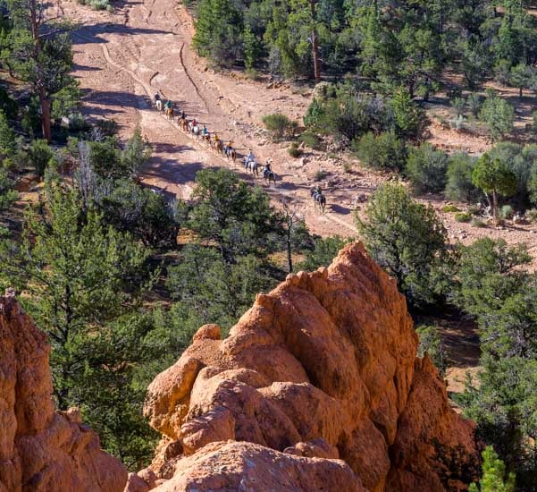 Horses and riders Arches Trail Red Canyon Utah-min