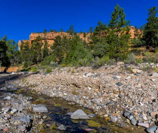 Creek in Casto Canyon red rocks in Utah-min