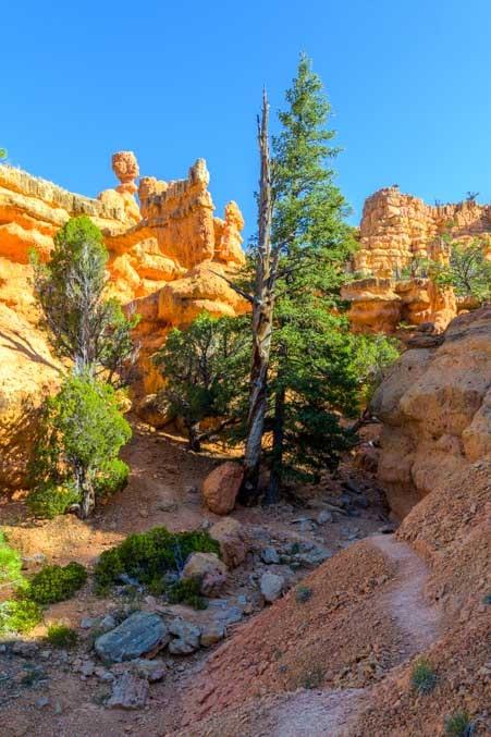 Hiking trail Arches Trail Red Canyon Utah-min
