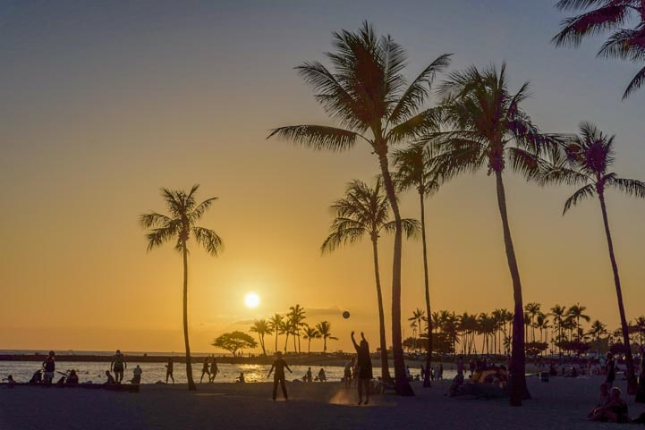 Palm trees at sunset in Waikiki