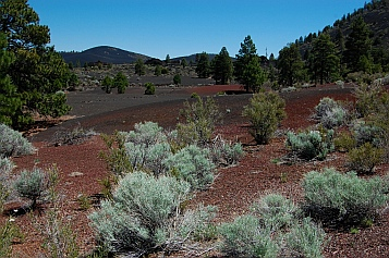 Colorful cinders in the lava flow at Sunset Crater in Flagstaff AZ
