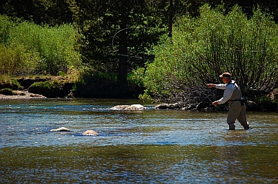Fulltime RV living and fly-fishing near Tuomomne Meadows in Yosemite National Park CA California