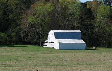 Farms along Natchez Trace Parkway, Mississippi