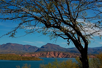 Campground at Roosevelt Lake Arizona