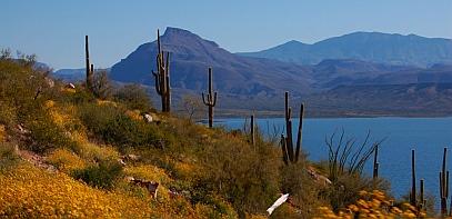 Roosevelt Lake Az Desert Oasis Roads Less Traveled
