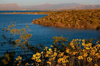 Roosevelt Lake Arizona kayaking