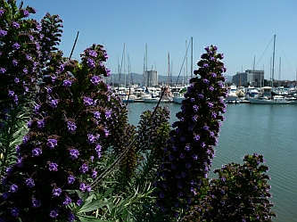 Emeryville, California