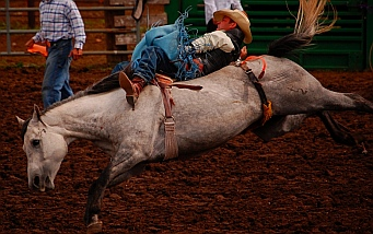bareback riding Helmville Rodeo