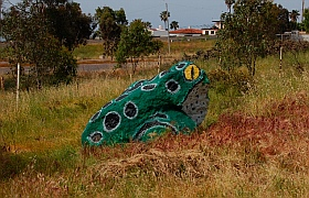 Frog-painted rock