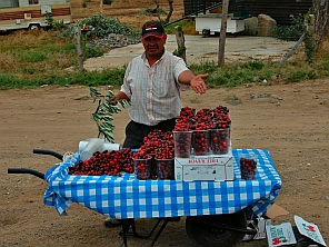Oregon cherries for sale on an Ensenada Mexico roadside