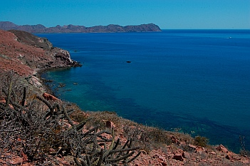 Isla San Francisco, Baja California Sur, Sea of Cortez, Mexico