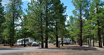 National Forest Service campground, Bonito Campground, Flagstaff, AZ
