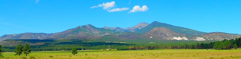 Flagstaff's San Francisco peaks seen across the meadow outside Bonito Campground.