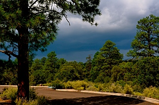 Imminent thunderstorm and downpour in Coconino National Forest outside Sunset Crater National Monument